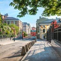 Петровский переулок и сирень :: Юлия Батурина