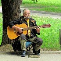 Музыкант :: Валентин Семчишин