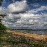 Финский залив :: Cергей Щагин