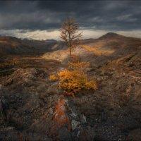 Одиночество осень... :: Влад Соколовский