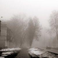 8 марта :: Елена Минина