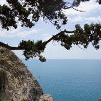 Начало подъёма на скалу Дива :: Наталия Григорьева