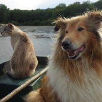 Мы на лодочке катались... :: Lyudmyla Pokryshen