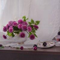 Мир цветов прекрасно–зыбкий... :: Валентина Колова
