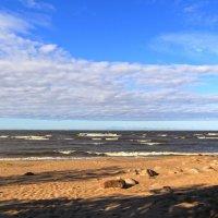 Берег Финского залива – слепок солнца и волны :: Андрей Иванович (Aivanovich-2009)