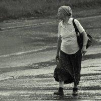 Идущая в июне :: Елена Минина