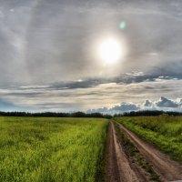 солнечное гало :: Евгений Фролов