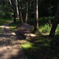 Свет и тени Измайловского парка :: Андрей Лукьянов