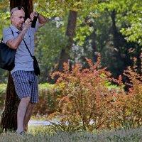 Нелёгкая это работа - фотографировать..! :: barsuk lesnoi