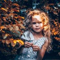 В сказочном лесу :: Андрей Неуймин