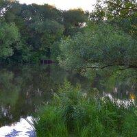 На реке Наре. :: Александра