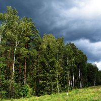 Буря догоняет :: Светлана