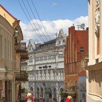 Прогулка по улочкам Вильнюса :: Larisa Freimane