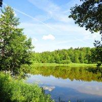 Летний день на озере :: Андрей Снегерёв