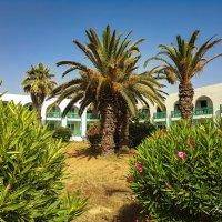 Тунис. :: Андрей Козов