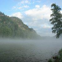 Туман над Бией :: Andrey65