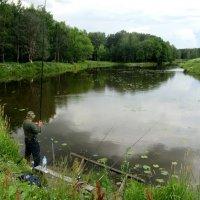 Один рыбак и четыре удочки... :: Елена Павлова (Смолова)