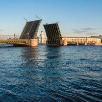 Пейзаж с Дворцовым мостом :: Владимир Засимов