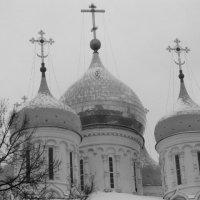 Купола собора :: Дмитрий Никитин