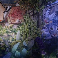 В саду :: irina Schwarzer
