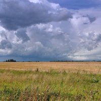 Июльская погода :: Александр Бойченко