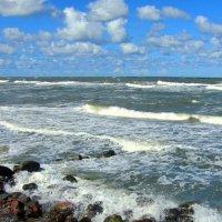 Берега морские :: Сергей Карачин
