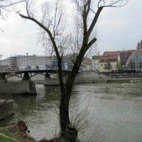 прогулки по Регенсбургу :: tgtyjdrf