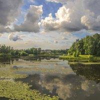Орловский пруд. :: bajguz igor