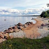 По берегу Финского залива :: veera (veerra)