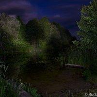 Лунная ночь на Челновой :: Сергей