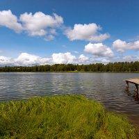 У озера :: Александр Силинский