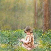 волшебный лес :: Марина