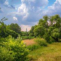 Летний пейзаж .... :: Александр Селезнев