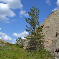 Можжевеловый перевал в горах Коныр. :: Хлопонин Андрей Хлопонин Андрей