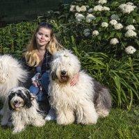Катя  с собачками :: Лариса Батурова