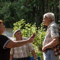 Интервью на опушке леса... :: Victor