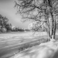 Зимний пейзаж......... :: Александр Селезнев