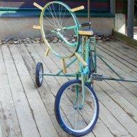 Вот такой велосипед! :: Наталья Цыганова