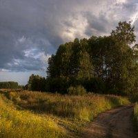 Июль-макука лета :: Владимир Клюнк