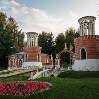 Вечер в Воронцовском парке :: Nyusha