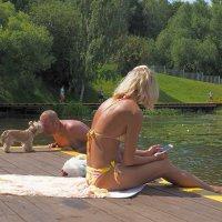 Хочешь познакомиться с женщиной, подружись с её собакой... :: Александр Орлов