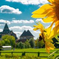 Летний день в парке Коломенское :: Kasatkin Vladislav