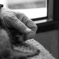 Руки :: Варвара Высоцкая