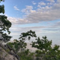 На берегу Чудского озера :: veera (veerra)