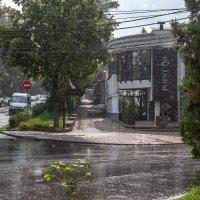 Просто летний дождь .... :: Андрей Lyz