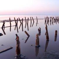 Вечерние танцы на розовом озере :: Ольга Голубева