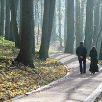 Парк для двоих. :: Борис Бутцев
