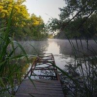 Утро на реке Цна :: София