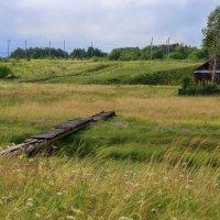 Домик одинокий на краю села... :: Нэля Лысенко