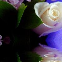 flowers composition :: Елена Елена